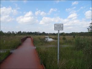 Ein Stahlsteg führt vom Besucherzentrum direkt ins Moor. Foto: Petra Grünendahl.